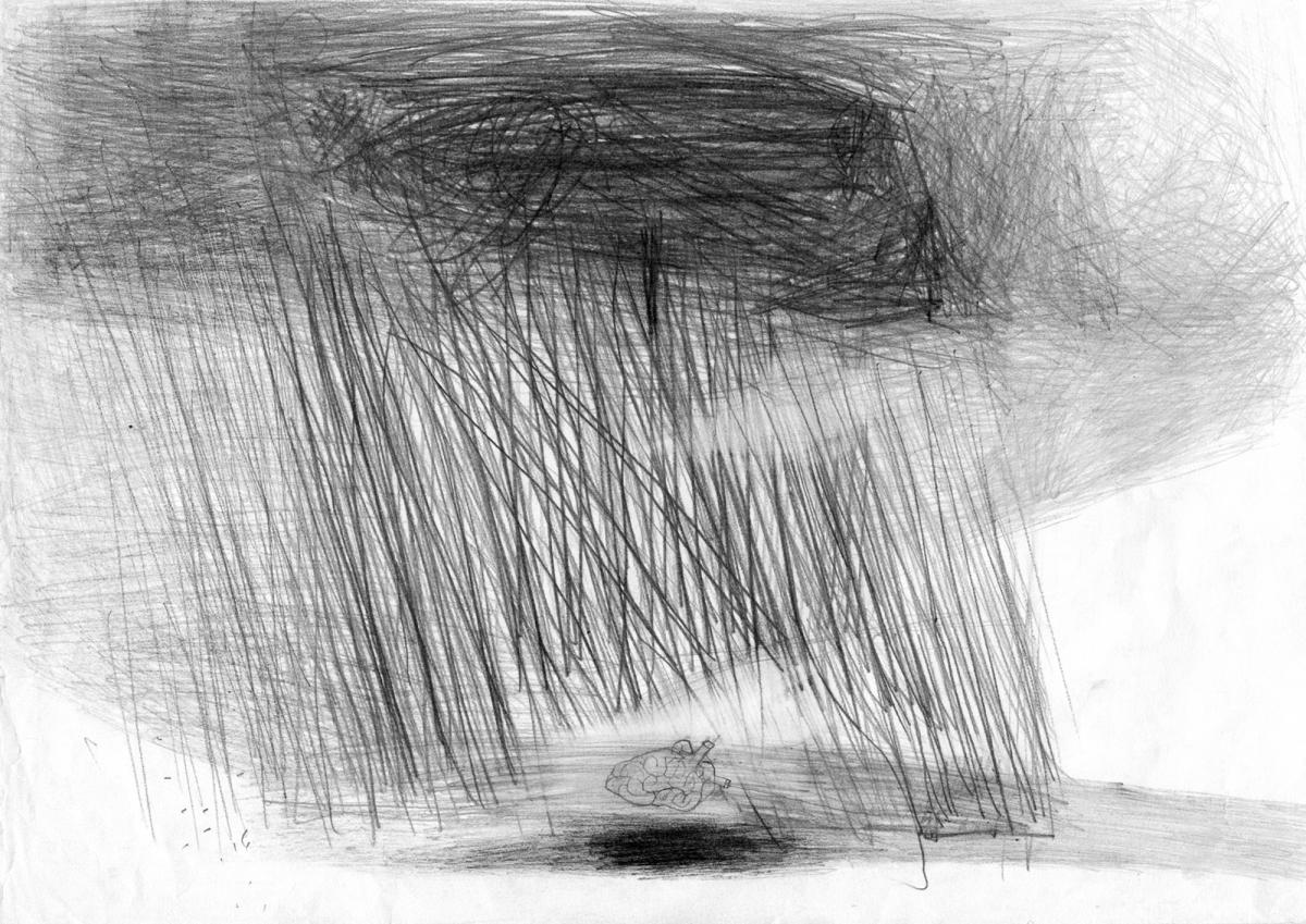 Daily drawings.Is everything precariuos?
